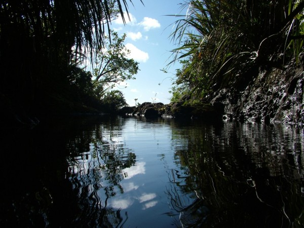 Koura Pool